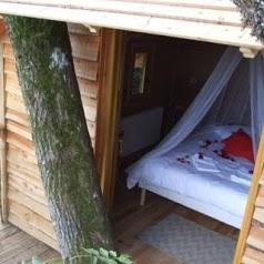Cabanes dans les arbres Nids des Vosges
