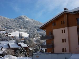 appartement in de Haute Savoie (Saint Jean de Sixt)