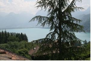 Studio Talloires Lac d'Annecy