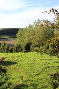 Domaine de la Vallée Saint Pierre
