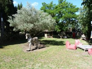 Mas à Cheval-Blanc en Provence