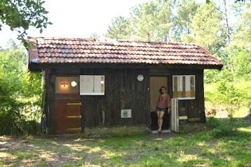 Chambre d' Hôtes de la Forêt