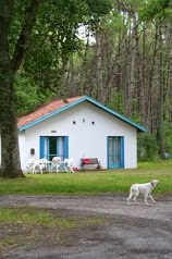 Camping Aire Naturelle - Famille Perroy