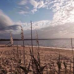 Entre Dune et Ports