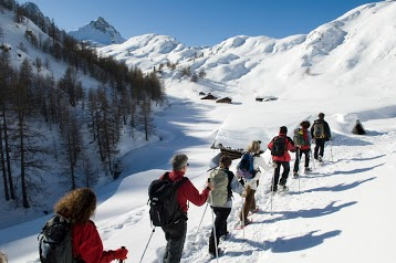La Vie Sauvage - Agence de voyage spécialiste de trekking et randonnée dans les Alpes du Sud