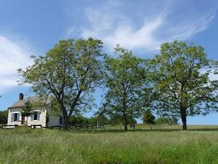 Gîte Rural du Pays Vert