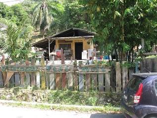 Rainforest Treehouse