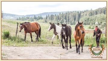 Oosting-HorseRiding