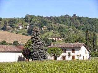 Domaine de Borie-Vieille