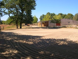 Horse Farm De Puech Merlhou