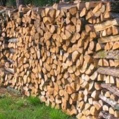 BOIS DE GASCOGNE, Vente de Granulés de Bois, Bois de Chauffage et Travaux Forestiers