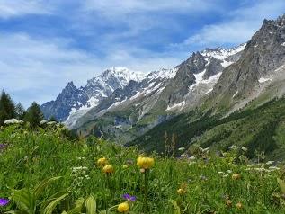 Picvert Montagne, Randonnées, Marche Nordique et VTT en champsaur et ailleurs