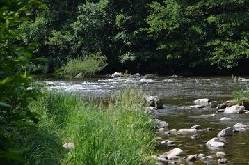 Camping Camp Municipal Au Fil De L'eau