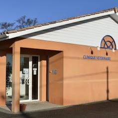 Clinique Vétérinaire VPLUS de Cavignac - Drs Faget, Poujol, Perrain