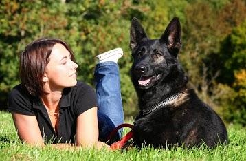 ANIMAL CARE - Stéphanie SCHLOSSER