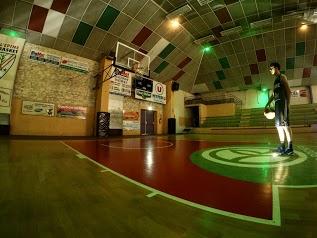 Epine Basket