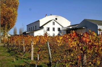 Cave des Vins de Bourgueil