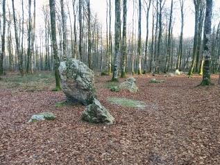 Le Cordon des Druides (Mégalithes)