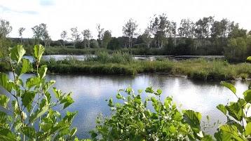 Réserve Naturelle de l'Étang de Saint-Ladre