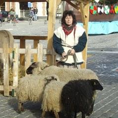 La Ferme Pédagogique d'Antan, pension chiens, chats, élevage de bouvier bernois et berger de podhale