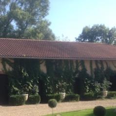 Chartreuse Lugardon