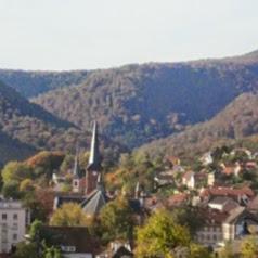 Valvital - Thermes de Niederbronn-les-Bains
