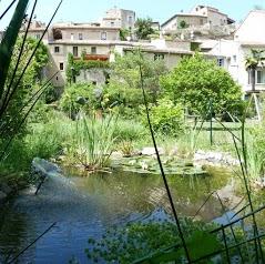 Gite Les Anoures en Provence