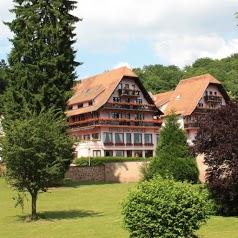 Hôtel des Vosges Klingenthal
