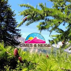 Cimes et Neige Immobilier Puy Saint Vincent